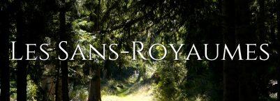 Bannière Livre Les Sans-Royaumes